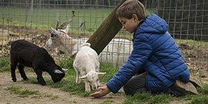 casas rurales para ir con niños en Vizcaya